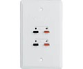 Philips Speaker Jack Wall Plate White PH62081 Dual Wire Push Clip Flush Mount Connection Audio Signal Stereo 16 Gauge Hook-Up Outlet Face Cover, Part # PH-62081