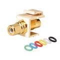 Steren 310-455IV Keystone RCA to RCA Jack Adapter Multicolored Bands Insert Ivory Gold Plate Female to Female QuickPort Audio Video Snap-In, Wall Plate Snap-In Data Junction Component Connection, Part # 310455-IV
