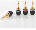 Monster QL GMT H QuickLock Gold Banana Connector 4-Pack 2-Pair Speaker Connector Male 24k Gold Plated Two Piece Screw-On Self Termination 2 Red / 2 Blue Crimpless Monster Audio Connector, Part # QLGMTH
