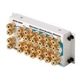 Steren 550-050 Home Audio Speaker Splitter Module 2 Channel 6 Room Distribution Banana Gold Posts 2x6 Speaker Splitter Module 14 GA Banana Post 45% Angled Binding Post Holes FastHome Audio Splitter Module Distributes, Part # 550050